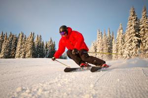 Ski © Skistar Trysil via Flickr unter CC-BY-Lizenz