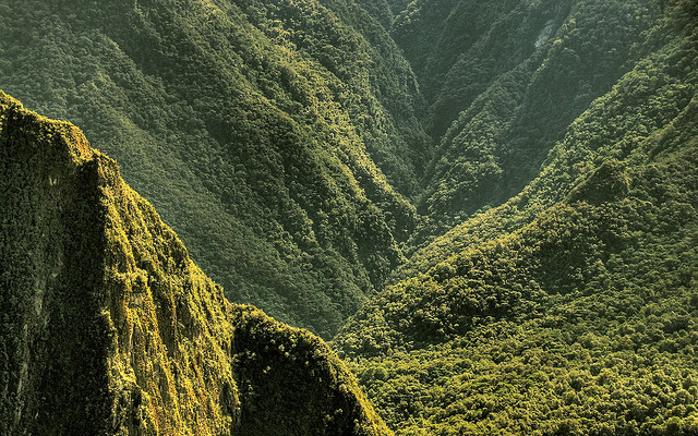 Wälder Perus Panorama Macchu Picchu © Tobias Mandt via Flickr unter CC-BY-Lizenz